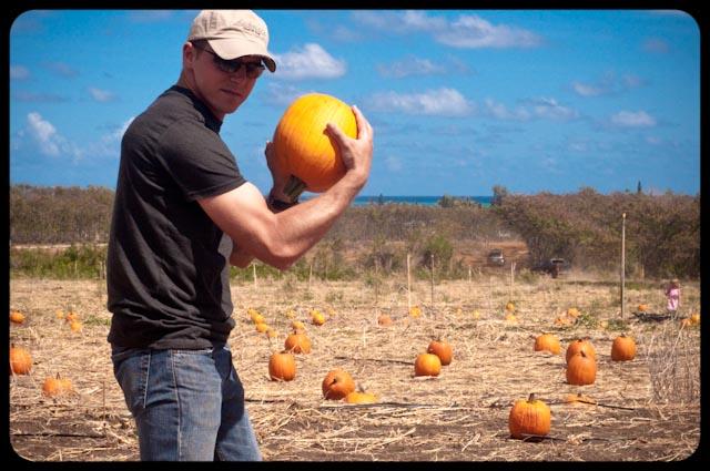 Pumpkin patch - 14 (1 of 1)