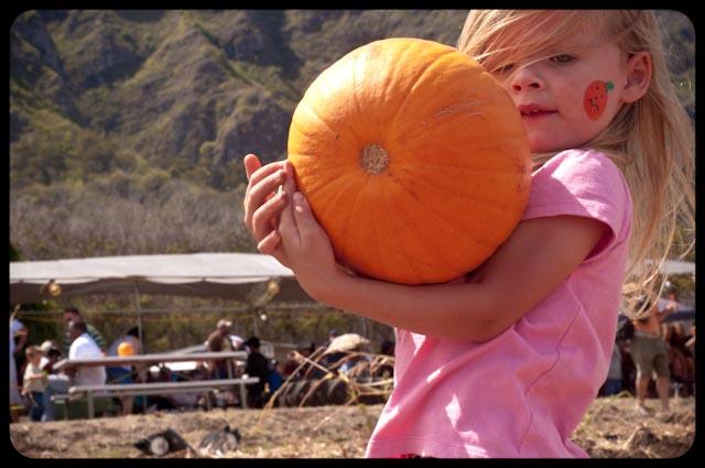 Pumpkin patch - 17 (1 of 1)
